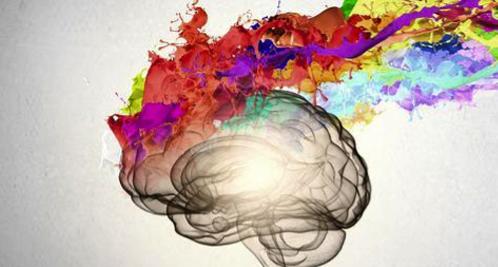 Neurosciences formation, créativité, Béatrice Maine