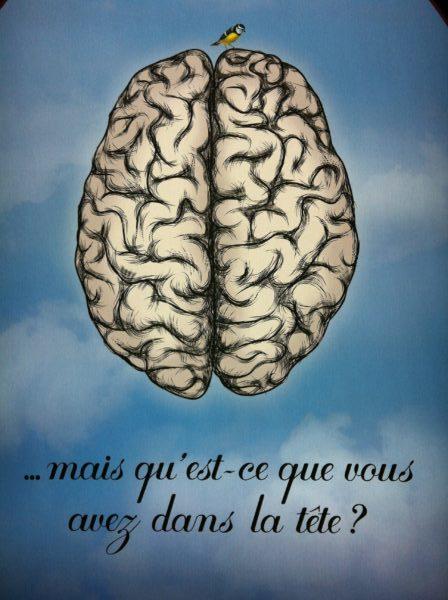 cerveau, mémoire