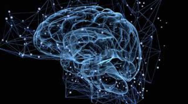 formation neurosciences, neurodanse, accomapgnement solo entrepreneur, life art process, art thérapie, danse thérapie, formation cerveau, processus de changement