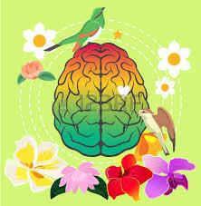 cerveau, mémoire, conférence neurosciences