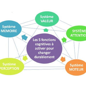 CAlendrier neurodanse formation neurosciences